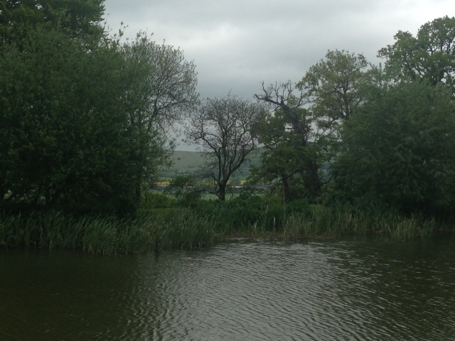 View from the canal