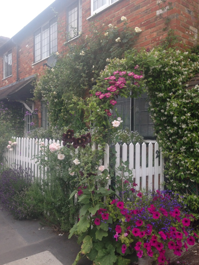 Front garden, near railway station in Marlow